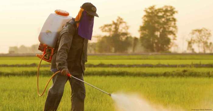 «L'histoire qui se trame autour de Monsanto a tous les ingrédients d'un scénario à laErin Brockovich»